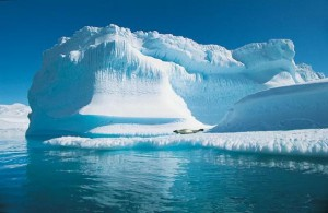 Международное сообщество ужесточает требования к арктическому туризму