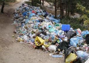 Из корейской мусорки на европейские луга - Zagrannik.org