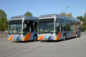 luxembourg_buses