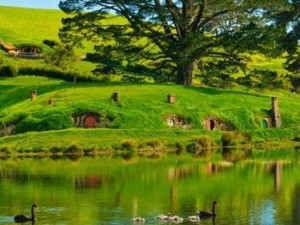 New_Zeland